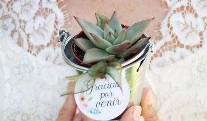 La Tienda del Cactus 1