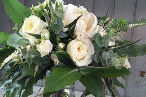Te prometo un jardín de rosas