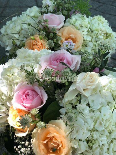 Flores exclusivas