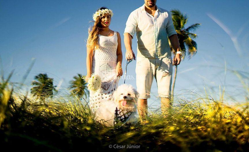 Perro en las fotos de boda