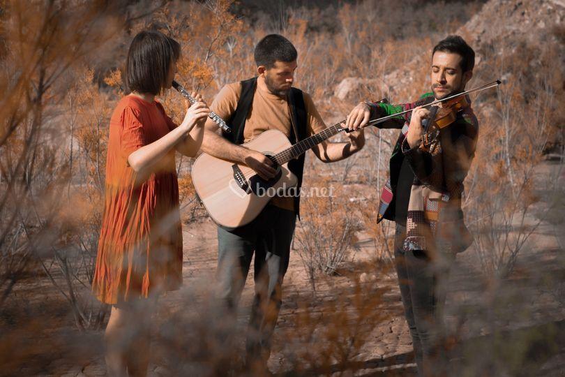 Música Folk