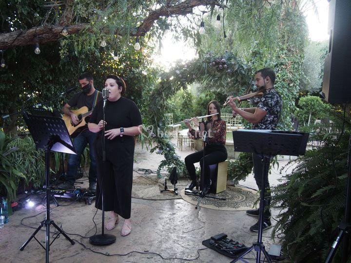 Grupos con cantante