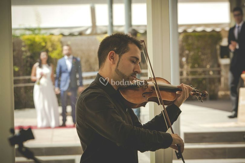 Violin Music Experience