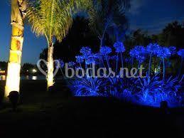 Iluminacion colorida