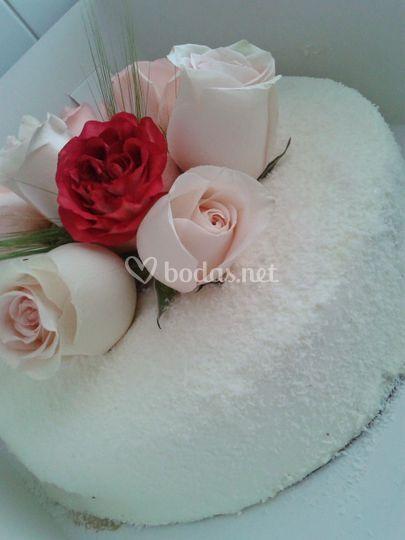 Cocó y rosas
