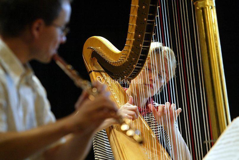 Dúo flauta y arpa