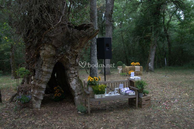 Floristeria Torrens