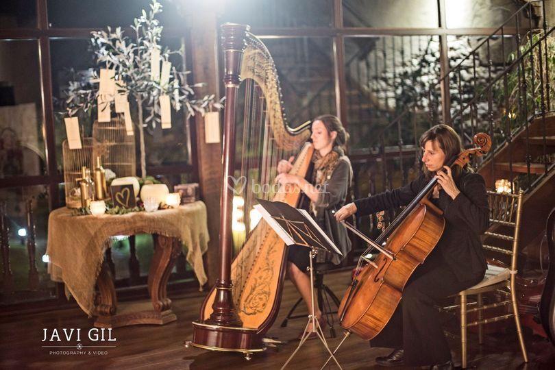 Actuación de arpa y cello