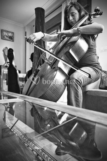 Gema - Cello