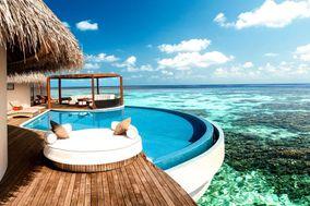 Suny Travel