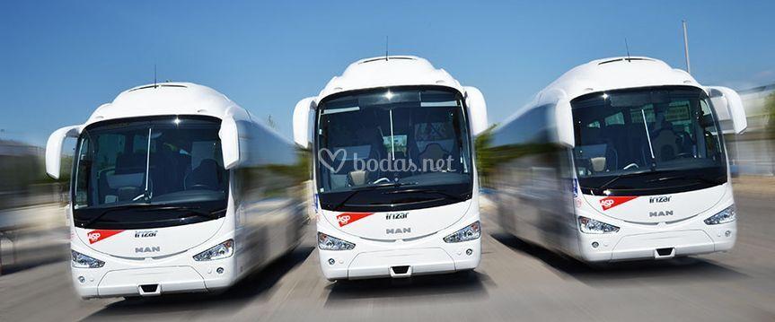 Autobuses Asp Group