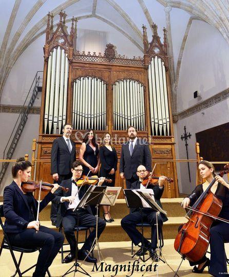 Grupo de Cámara (8 Músicos)