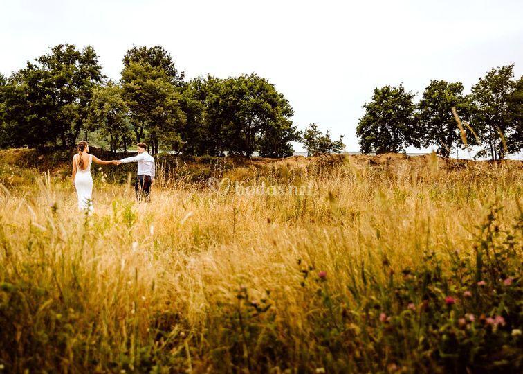 Entre las hierbas