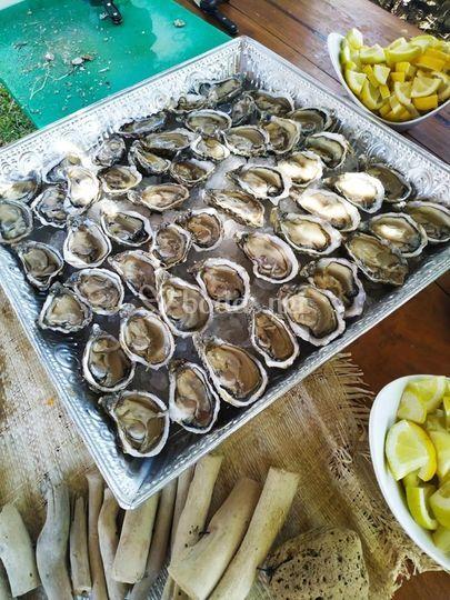Recepción: corner ostras