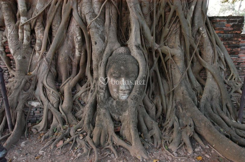 Tailandia Ayuttaya