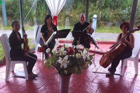 Cuarteto Diverdi