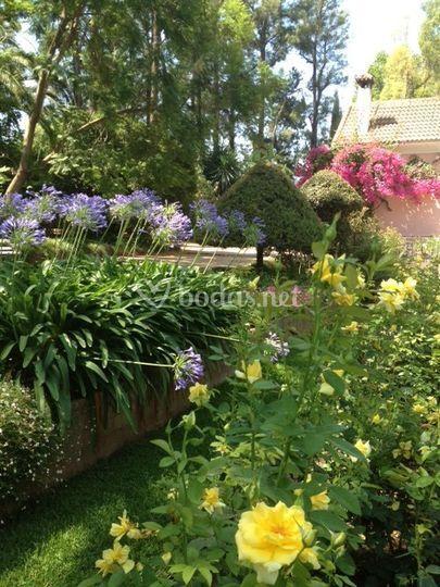 El jardín en julio