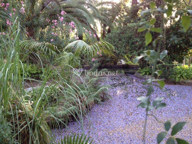 El jardín en junio