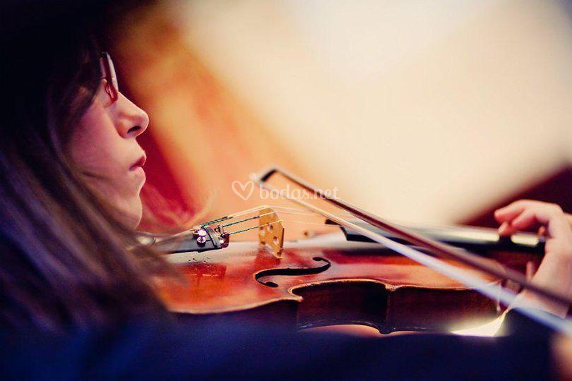 Violinista en bodas y eventos