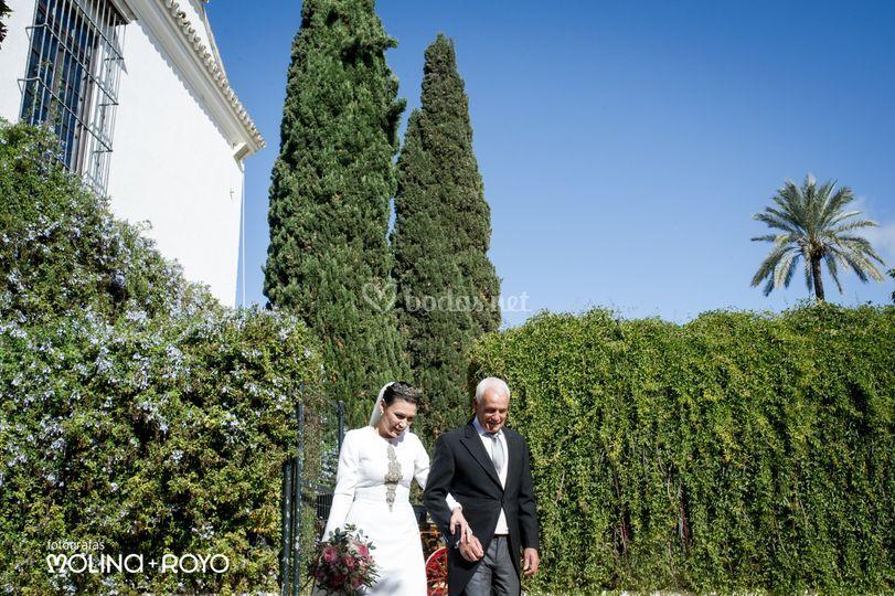 04/11/17 Tania y Jose Antonio