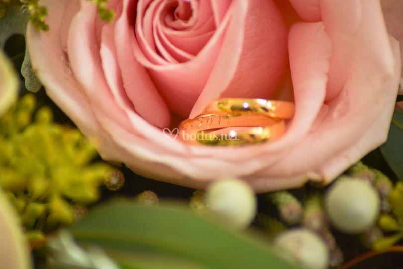 Los anillos.