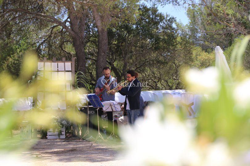 Músicos en el jardín