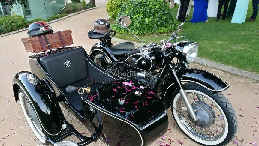 David - Sidecar Vintage