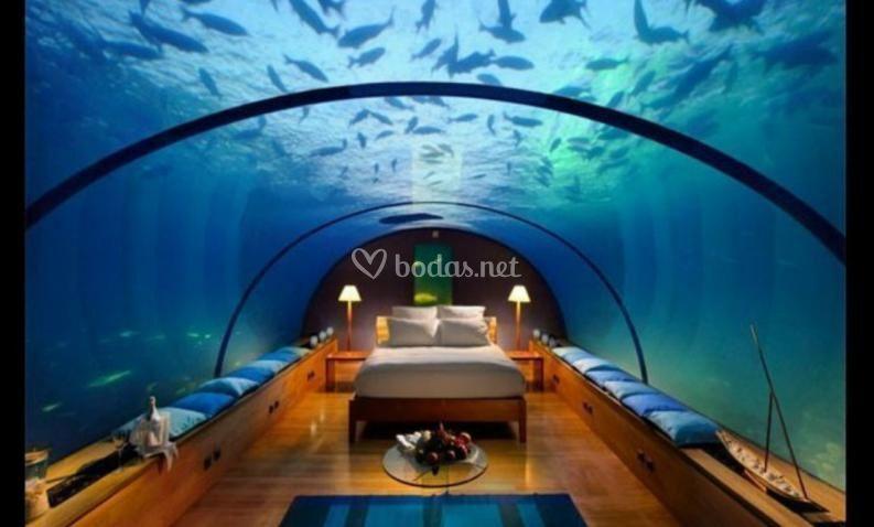 ¿Bajo el mar...?