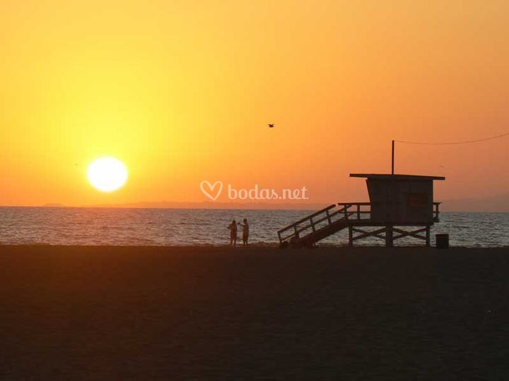 Venice Beach-Los Angeles