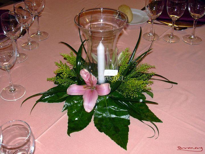 Flores guardiola