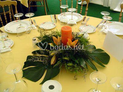 Centro mesa banquete