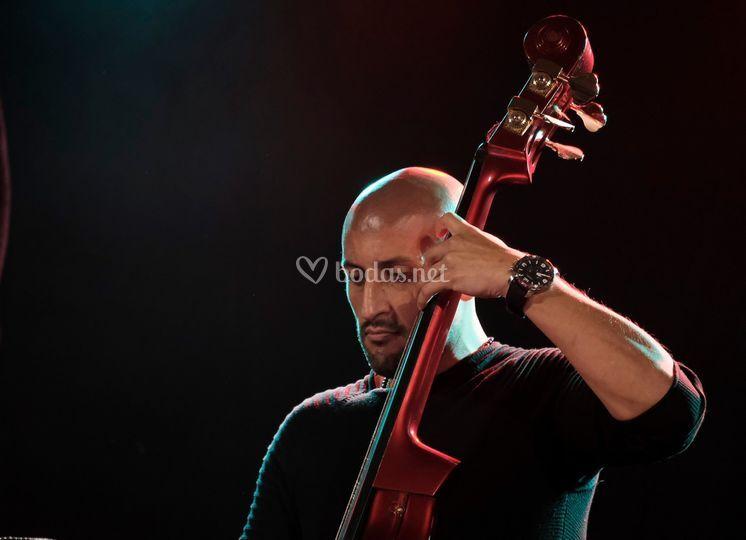 Pablo Cedeño. Bajista. Jamila
