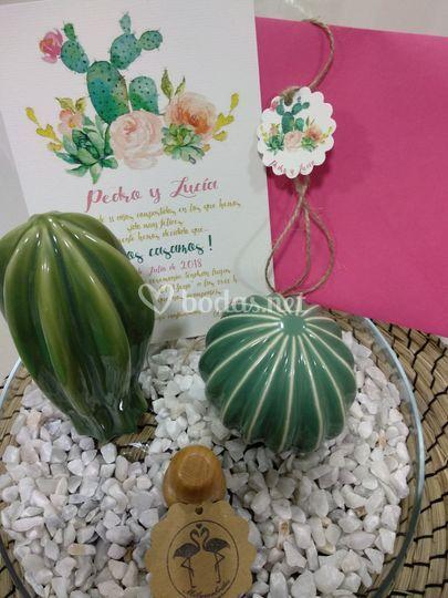 Invitación cactus