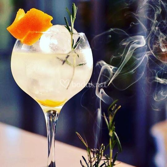 Ejemplo de Gin Tonic Premium