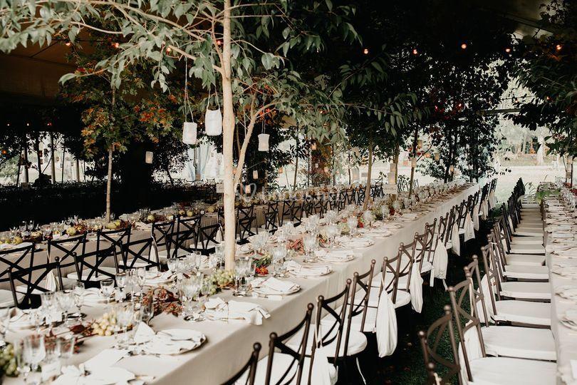 Banquete- robertmarcillas