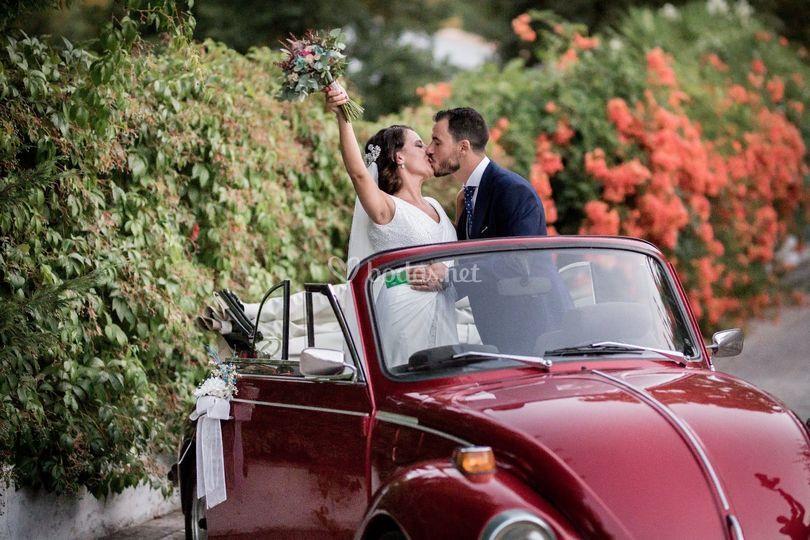 Vw Classic & Vintage Weddings