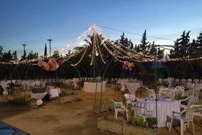 Celebraciones Pitamo