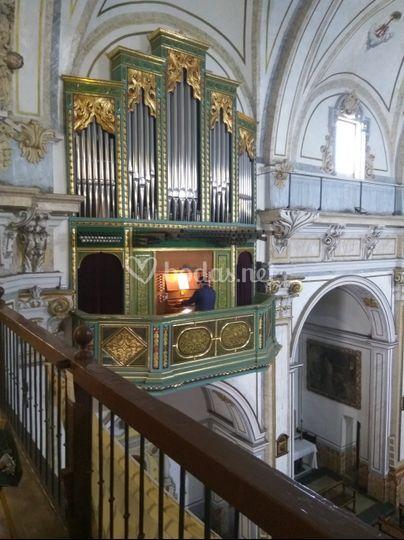Organista, boda religiosa