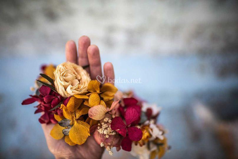 Flores preservadas y secas
