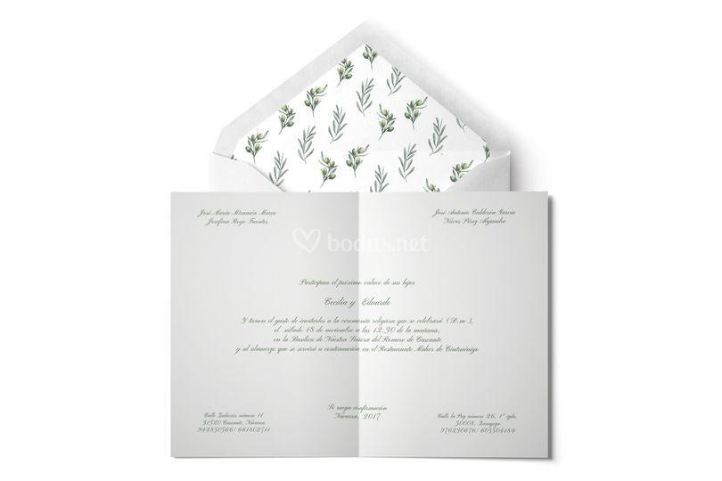 Invitación olivo y díptico