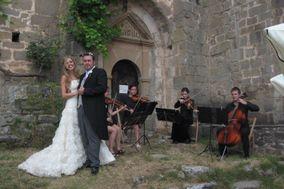 Cuarteto de cuerda Playful Ensemble