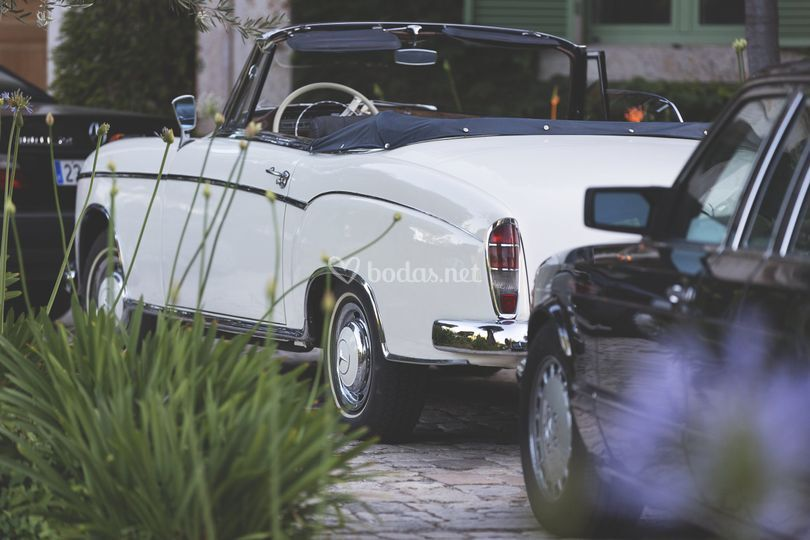 Ponton cabrio