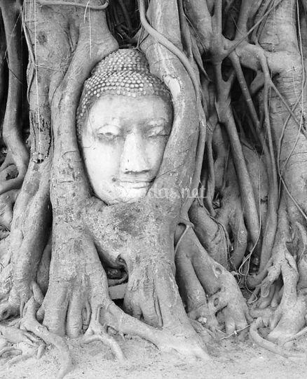 Misteriosa Tailandia