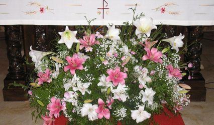 Flores Lys