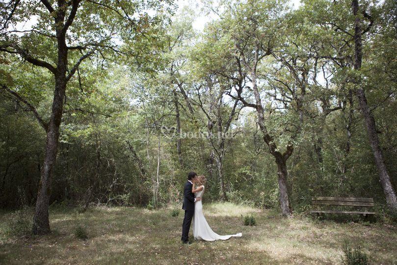 Tu boda en plena naturaleza
