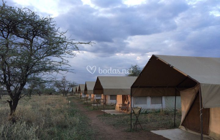 Safaris kenya lodge pc
