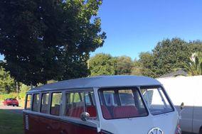 Frank - Volkswagen T1