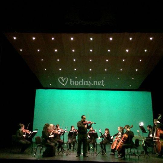 Orquesta de cuerda con solista