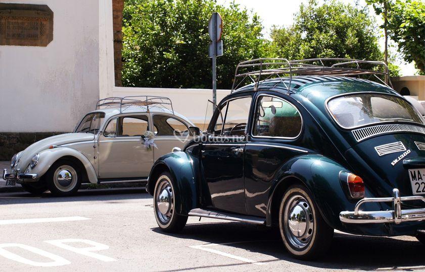 Pareja VW Escarabajos