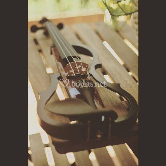 Nuevo violín